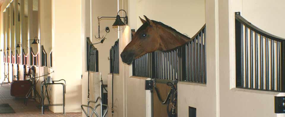 Woodland-Tilt-Up-Sunlight-Equestrian-Barn-2